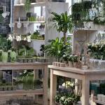 Biancas Blumenstil - Der Blumenladen aus Gersfeld in der Rhön